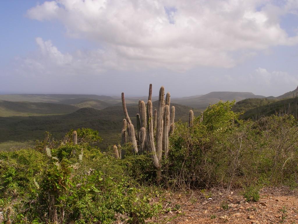 De natuurparken van Curaçao